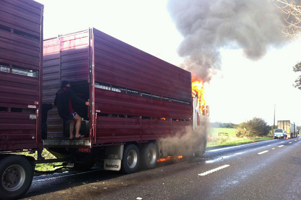 A cattle truck on fire on SH 27 this afternoon (Photo: Travis Tschumy)