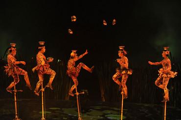 Cirque du Soleil's Totem (Reuters file)