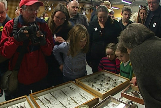 Wellington celebrates 150 years